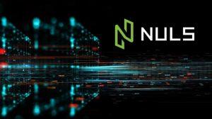 Nền tảng Nuls Platform bị hack, 2% tổng số Token lưu hành bị thỏa hiệp
